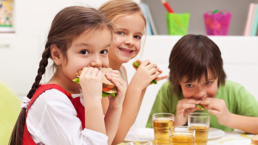 Entrada AA. Alimentación saludable para niños
