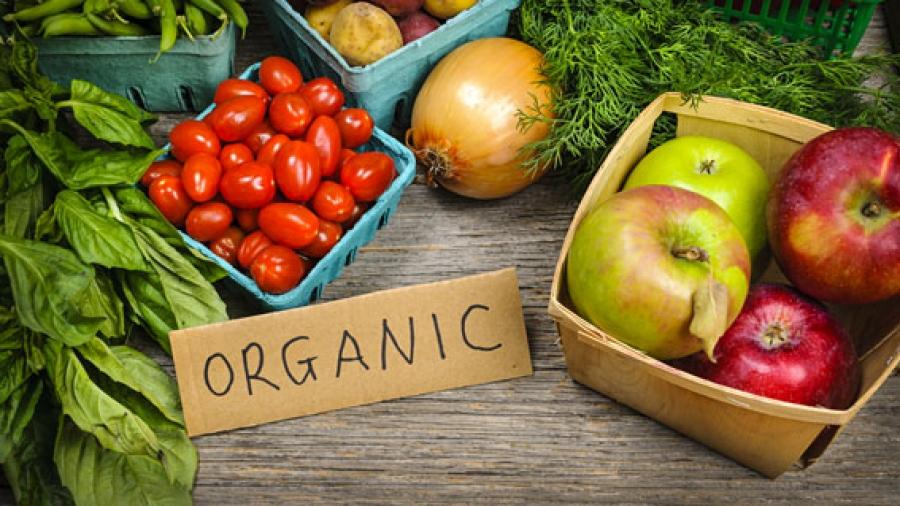 Entrada AA. Beneficios de la alimentación ecologica