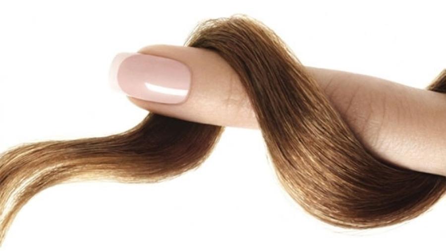 Entrada AA. Piel pelo uñas