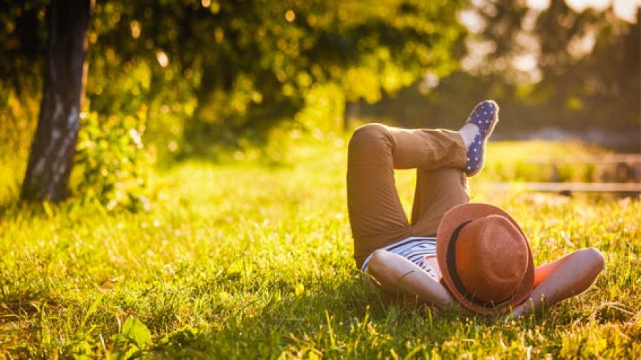 Entrada AA. Relax primavera con apirelax