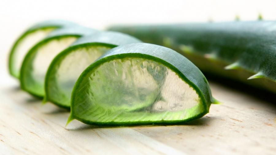 Entrada semana 22. Beneficios de beber Aloe Vera 1
