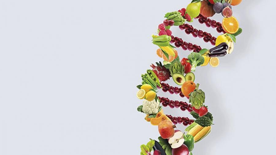 Entrada Semana 34. Alimentación y genes 1