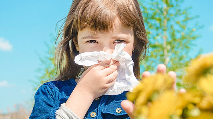 Entrada Semana 14. Alergia 1